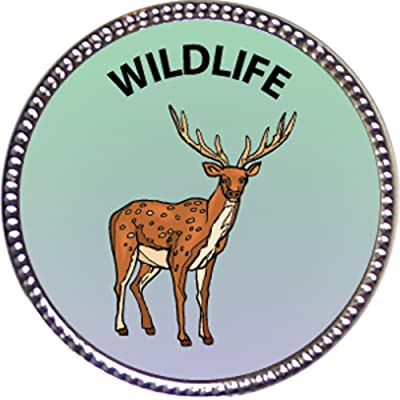 Keepsake Awards Wildlife Award, 1 inch Dia Silver Pin Nature Studies Collection: Toys & Games