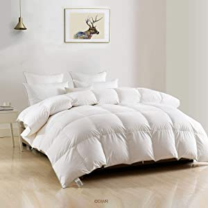 King Goose Down Comforter - Ultra-Soft Egyptian Cotton Cover, 750 Fill Power Medium Weight for All Season Luxury European Down Feather Comforter Duvet Insert (106x90 Inches, White)