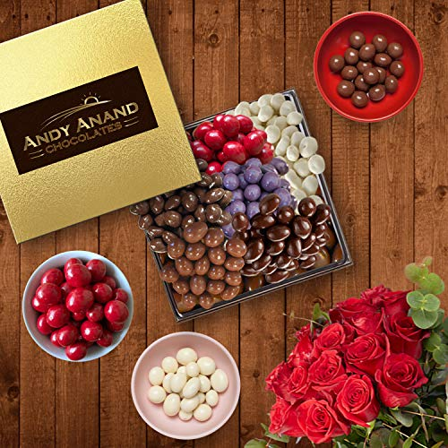 Andy Anand's Chocolate covered 6 Pack 1.2 lb of Dark Cranberries, Coffee, Ginger, Cherry, Blueberry Yogurt, Birthday, Valentine, Gourmet Christmas Holiday Food Gifts, Thanksgiving, Mothers Fathers Day (Birthday Chocolate Fruit Basket)