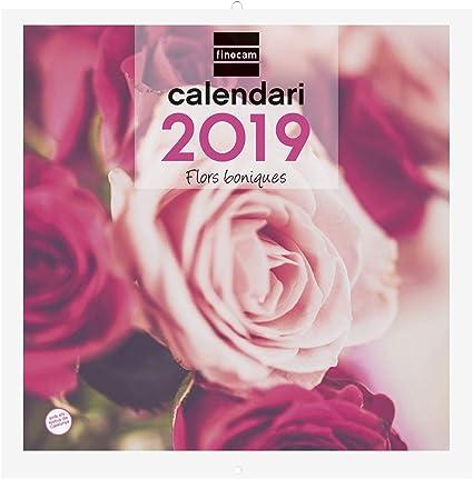 Finocam 780313419 - Calendario de pared 2019: Amazon.es: Oficina y ...