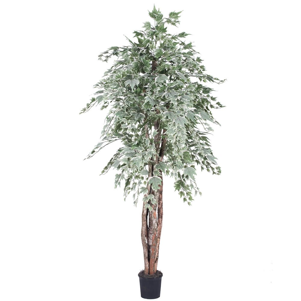 Vickerman TEX1660-07 Green Maple Everyday Tree