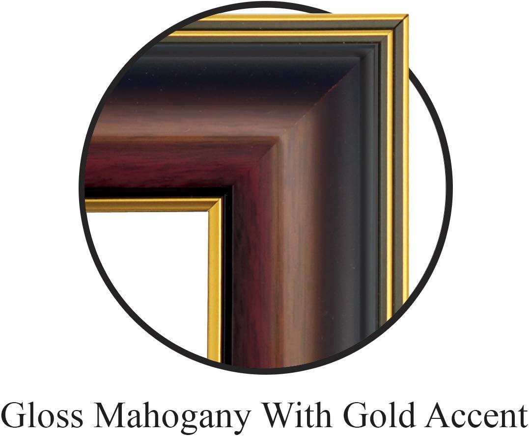 Professional//Doctor Sculpted Foil Seal Graduation Diploma Frame 16 x 16 Gold Accent Gloss Mahogany Signature Announcements Xavier-University Undergraduate