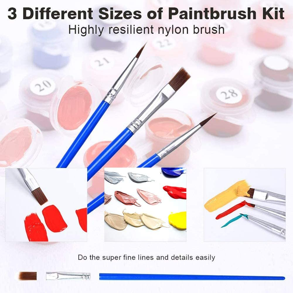 Canvas Oil Painting Kit for Adults Without Frame DIY Paint by Numbers 16 x 20 Drawing Paintwork with Brushes and Acrylic Pigment