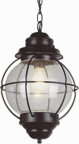 Trans Globe Lighting Trans Globe Imports 69906 BK Americana One Light Hanging Lantern from Catalina Collection in Black Finish, 10.00 inches