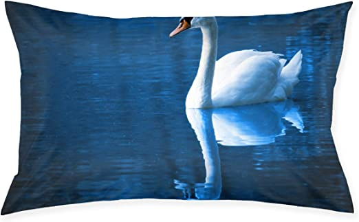 Amazon Com Kidhome 2030 Inch Throw Pillow Cases Blue Swan Decorative Pillowcase Cushion Cover For Sofa Home Kitchen