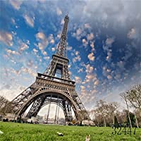 Laeacco Vinyl Thin Backdrop 8X8FT Photography Background French Paris Eiffel Tower Clouds Sky Green Lawn Scene Adults Portraits Background Video Photo Studio Props 2.5(W)x2.5(H)M