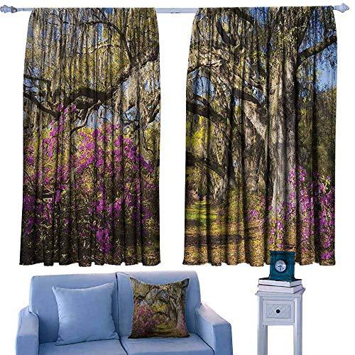 South Carolina Printed Curtain - Mannwarehouse Printed Curtain Americana Landscape Decor Flowers in Charleston South Carolina Azalea Blooms Oak Tree Set of Two Panels 55