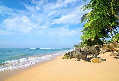 Amazon com : OFILA Tropical Beach Backdrop 8x6 5ft Seaside