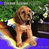 Cocker Spaniel Puppies 2014 Wall Calendar