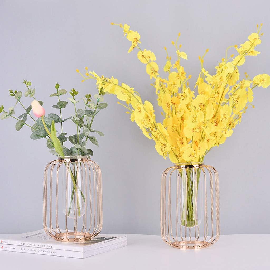 Plantes Terrariums D/écoration de Mariage XLGX Vase /À Fleur Vase en Verre Transparent Cylindrique Vase Design Tube avec Support M/étallique Id/éal pour Fleurs Or