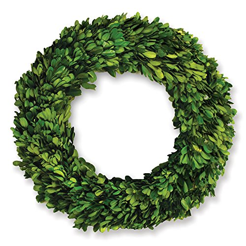 Napa Home & Garden 12-inch Preserved Boxwood Wreath
