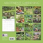 2021 Wall Calendar – Allotment Gardening Calendar, 12 x 12 Inch Monthly View, 16-Month, Plants and Vegetable Garden…