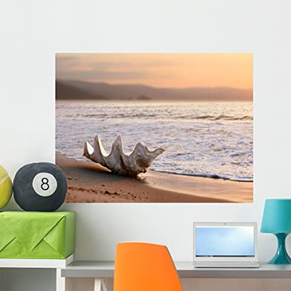 Amazoncom Wallmonkeys Seashell On The Beach Wall Decal Peel And