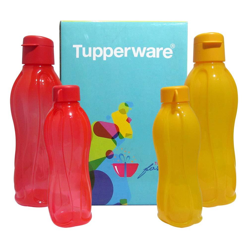 Tupperware Aquasafe Sports Water Bottle