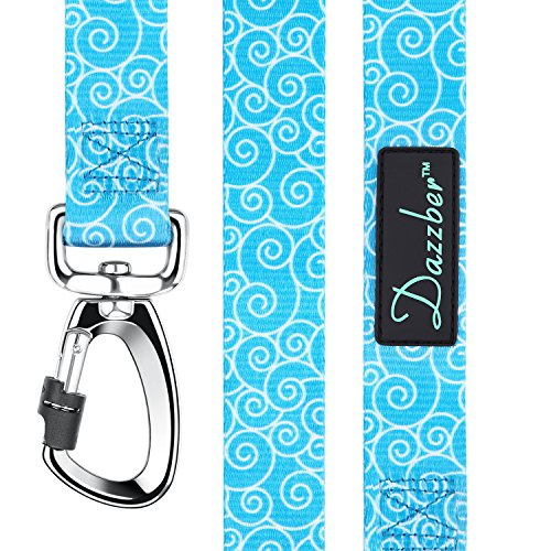 Dazzber Durable and Strong Dog Leash 6 ft x 1 Sky Blue, Heavy Duty Leashes for Medium to Large Dogs