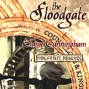 The Floodgate Audiobook