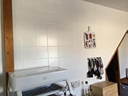 Ronseal Problem Wall Paint Review