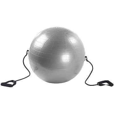 """Ballon de gym """"Gym Ball"""" - Avec tendeurs"""