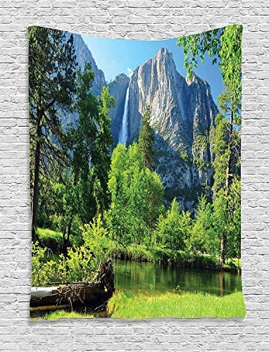 Ambesonne Yosemite Tapestry, Upper Yosemite Falls Yosemite National Park California Picture, Wall Hanging for Bedroom Living Room Dorm Decor, 40 X 60 , Green Blue