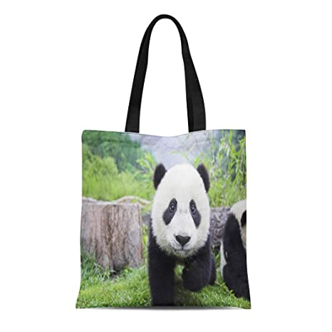 d959725dc795 Amazon.com: Semtomn Cotton Canvas Tote Bag Panda Bear Sleeping on ...