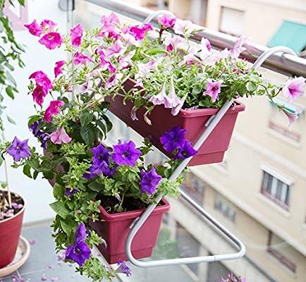 Jardín colgante, Soporte de balcón con 2 balconeras color cereza 50x16x14 cm.: Amazon.es: Jardín