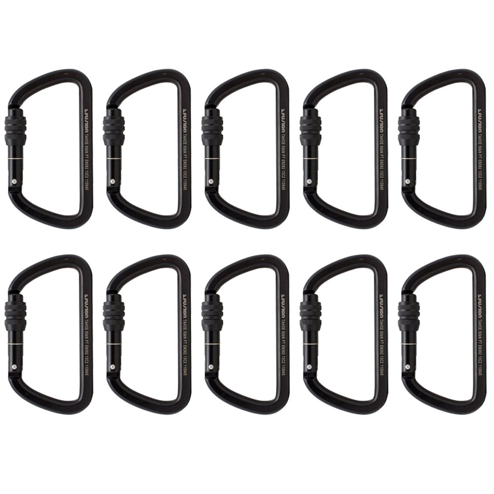 Fusion Climb Tahoe Steel Screw Lock Key Nose Straight D-shape Carabiner 10-Pack