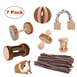 JanYoo Rat Chinchilla Toys Guinea Pig Accessories