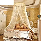 European-style Encrypted Ceiling Mosquito Nets/Floor Round Head Mosquito Net/Ceiling Princess,Top Hanging Mosquito Net/Increase The Palace Korean Mosquito Net-B E