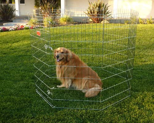 42 inch Exercise Pen By Majestic Pet Products Large