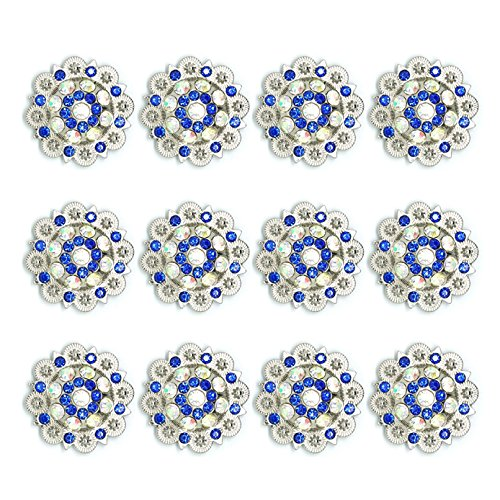 - MarryAcc Berry Conchos with Screws Metal Flower Rhinestone Conchos 12 Pieces (Color 12)