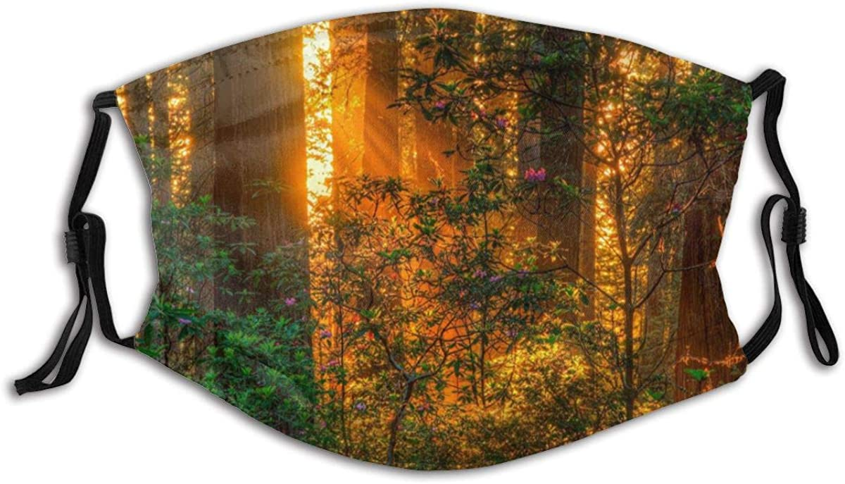 Unisex Outdoors Face Mask Seasonal Nature Anti-Dust Adjustable