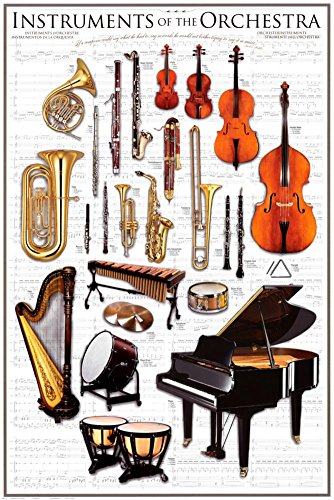 Instrument Family Posters - Instruments of the Orchestra Art Print Poster Symphony Classical Music  24 x 36