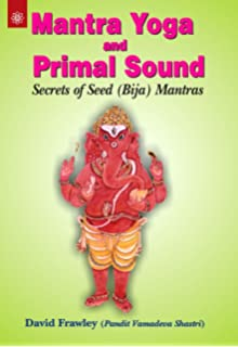 Buy sri rudram book online at low prices in india sri rudram mantra yoga and primal sound secrets of seed fandeluxe Choice Image