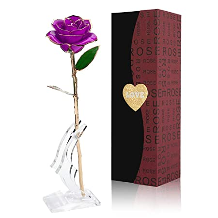 Rose with Transparent Stand