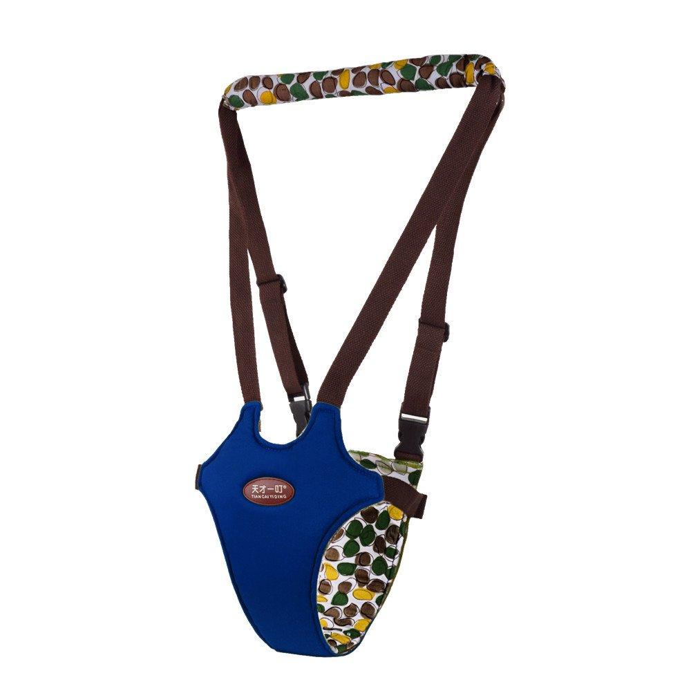 Frisch - Andador de bebé, asistente de caminar, para aprender a caminar y para bebé, 4 en 1, arnés de seguridad funcional para caminar para bebés de 7 ...