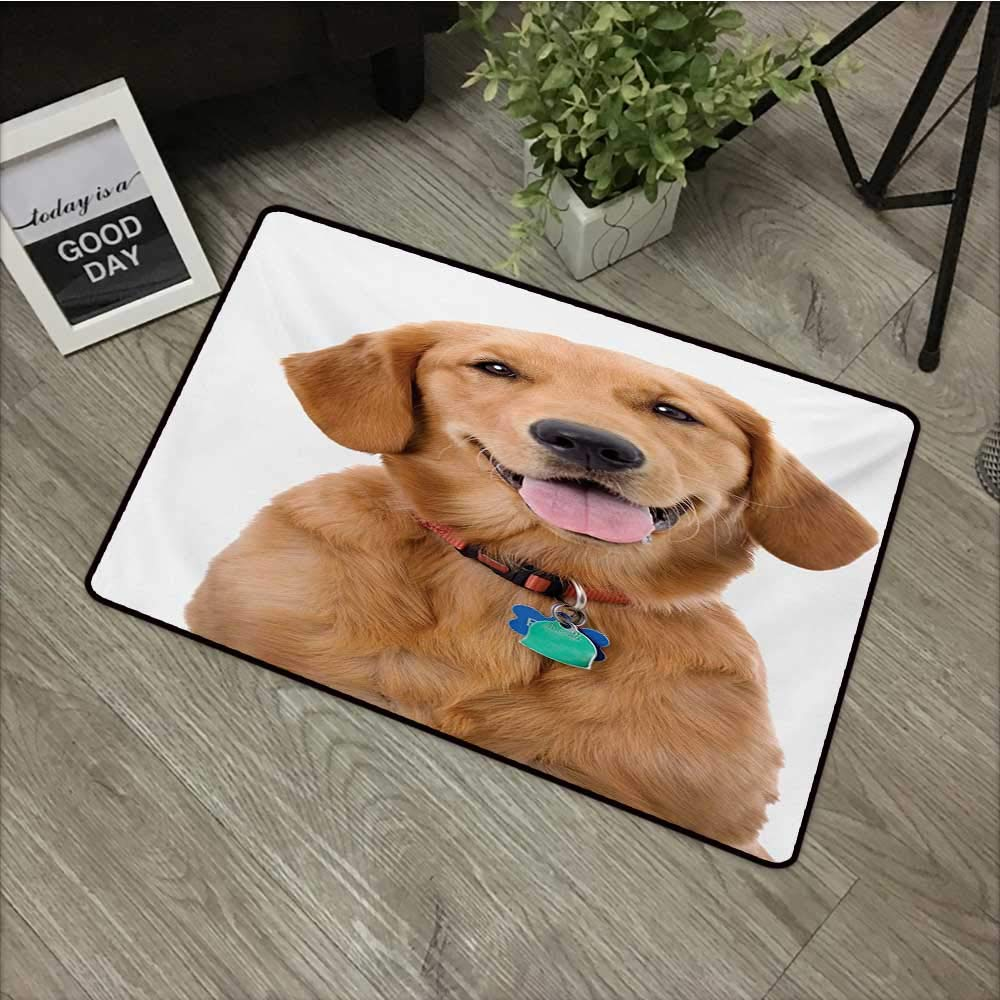Moses Whitehead Flowers Doormat Entrance Mat Golden Retriever,Portrait of Young Pedigreed Dog Wearing a Collar and Tags Domestic Animal,Multicolor,for Entry, Garage, Patio, High Traffic Areas,35''x59'' by Moses Whitehead