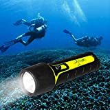 Lychee® Diving Flashlight, 30 Meter Deep Waterproof LED Submarine Light, 300 Lumens Scuba Underwater Sport Outdoor Sport Torch for Diving & Camping, Batteries Operated