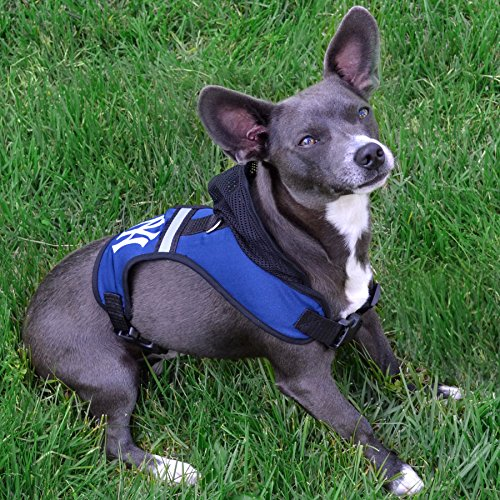 Image of Pets First Seattle Seahawks Harness, Medium