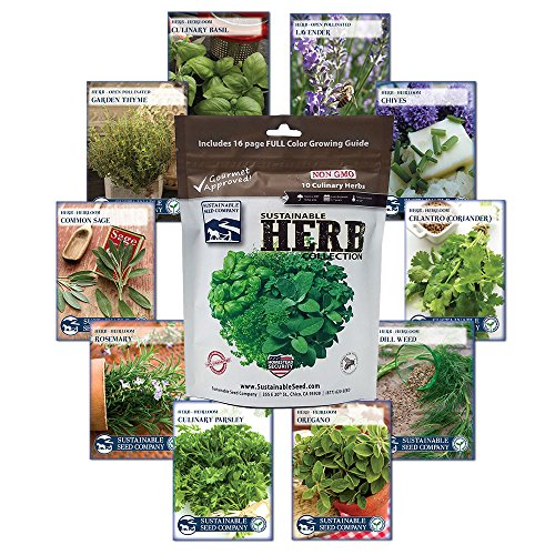 10 Variety Culinary Herb Collection and 96 Page Growing Guide - Non GMO Heirloom Basil, Thyme, Rosemary, Oregano, Parsley, Lavender, Sage, Cilantro, Chives, -