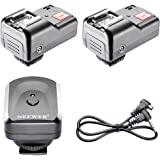 Neewer 4 Channels Wireless/Radio Hot Shoe Flash Trigger Set with 2 Receivers for DSLR Canon Nikon Pentax Olympus (Set: 1 Transmitter + 2 Receivers)