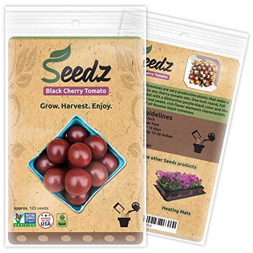certified-non-gmo-seeds-appr-125-black-cherry-tomato-seeds-non-gmo-tomato-seeds-open-pollinated-untr