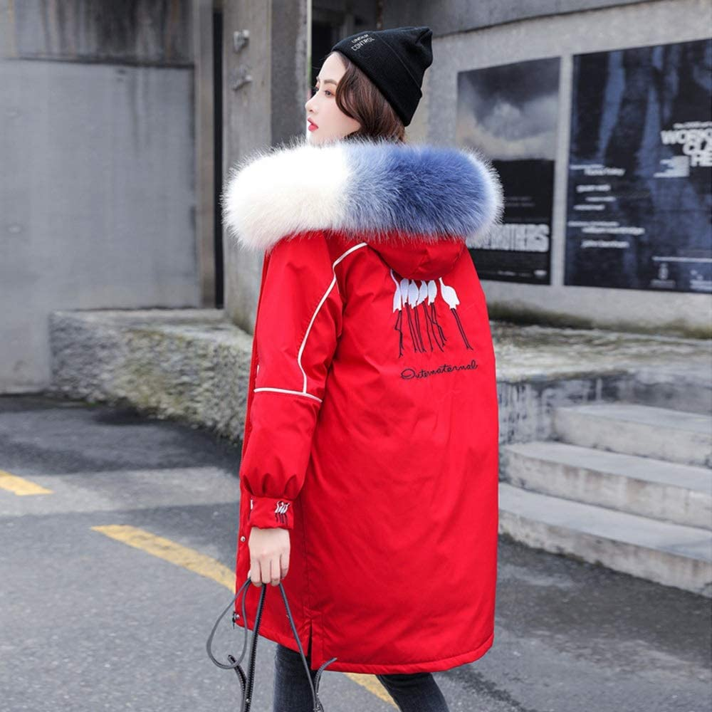 Automne Et Hiver Nouveau Bas Coton Femmes Grande Taille De La Version Coréenne De Femmes du Long Fat MM200 Kg Peut Porter Une Veste Red