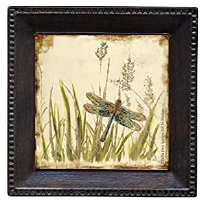 Thirstystone Ambiance Coaster Set, Dragonfly Meadow, Multicolored