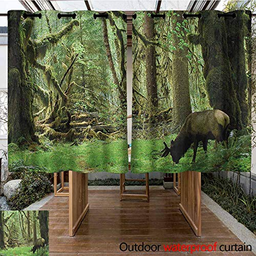 AndyTours Outdoor Grommet Window Curtain,Rainforest,Roosevelt Elk in Rainforest Wildlife National Park Washington Antlers Theme,Curtains for Living Room,K160C160 Green Brown