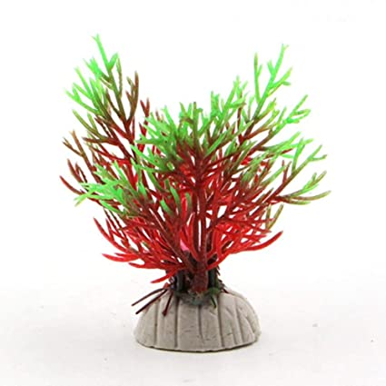 Glass Fish Tank Bamboo Base Mini Fish Tank Decoration Accessories Fish Bowl 1pcs For Sale Pet Supplies Aquariums & Tanks
