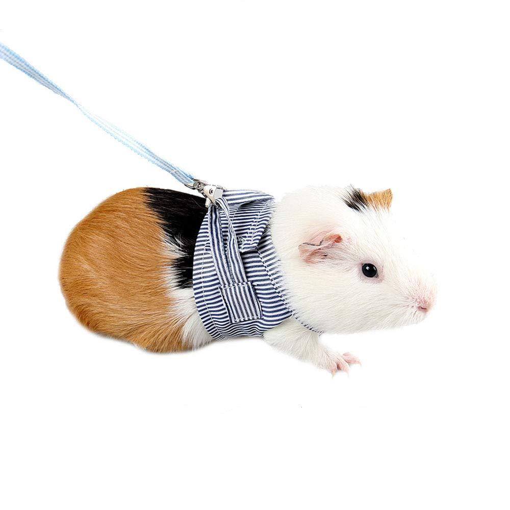 ASOCEA cochons d'Inde Lapin ré glable en Coton Doux Ensemble Harnais et Laisse pour Les Rats Iguana Hamster furets Animal de Petite Taille