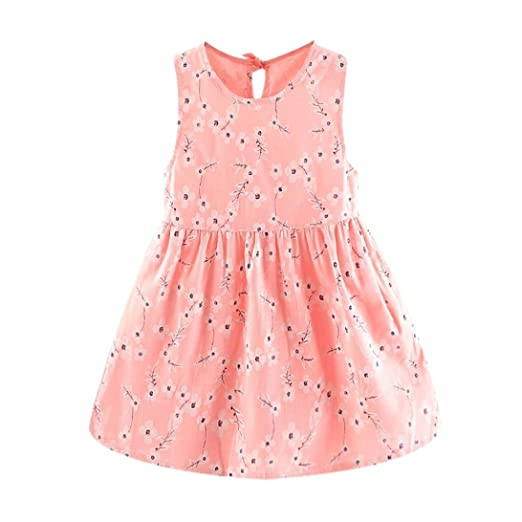 221e08bb1 Hatoys Cute Flower Princess Sleeveless Dress,Baby Girls Casual Clothes  Sundress Dresses Outfit (6M