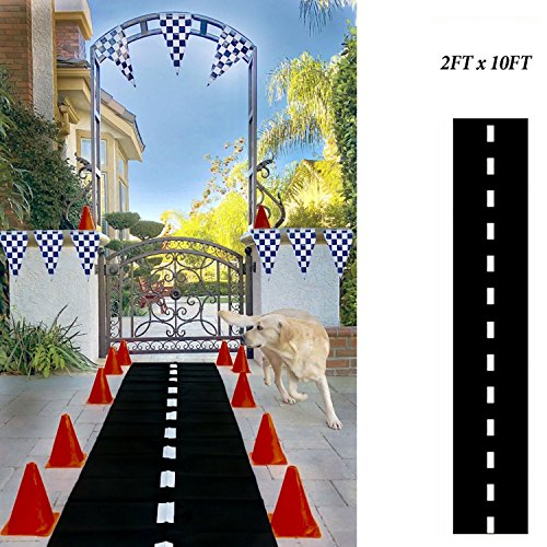 Adorox 1Pk (24'' x 10ft long) Racetrack Floor Runner Party Decoration Race Car - Double Runners Down