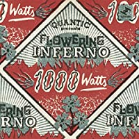 1000 Watts (Vinyl)