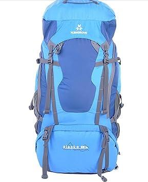 mochilas montaña Unisex bolsos de montaña profesionales 65L mochila bandolera mochila Mochilas de marcha (Color : Azul , Tamaño : 65L) : Amazon.es: Hogar